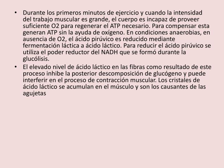 Durante los primeros minutos de ejercicio y cuando la intensidad del trabajo muscular es grande, el cuerpo es incapaz de proveer suficiente O2 para regenerar el ATP necesario. Para compensar esta generan ATP sin la ayuda de oxígeno. En condiciones anaerobias, en ausencia de O2, el ácido pirúvico es reducido mediante fermentación láctica a ácido láctico. Para reducir el ácido pirúvico se utiliza el poder reductor del NADH que se formó durante la glucólisis.