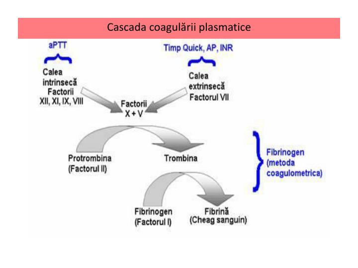 Cascada coagulării plasmatice