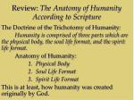 review the anatomy of humanity according to scripture