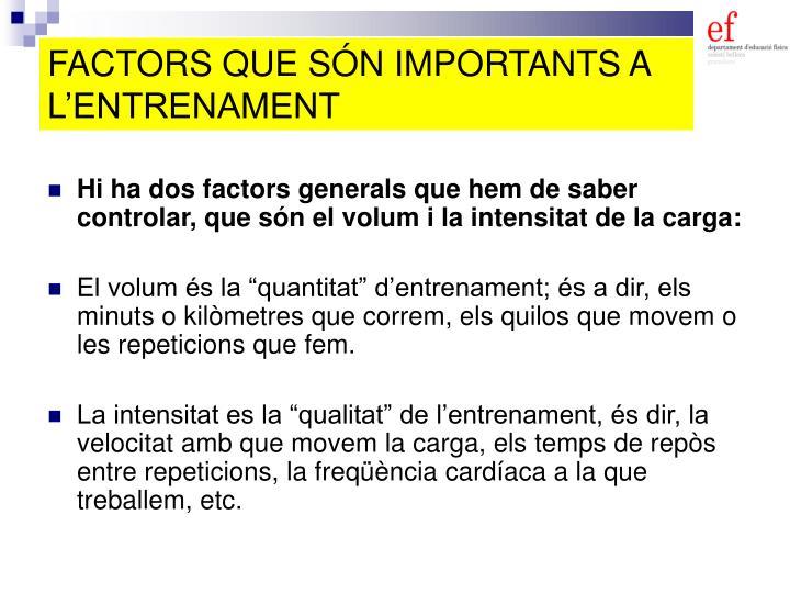 FACTORS QUE SÓN IMPORTANTS A L'ENTRENAMENT