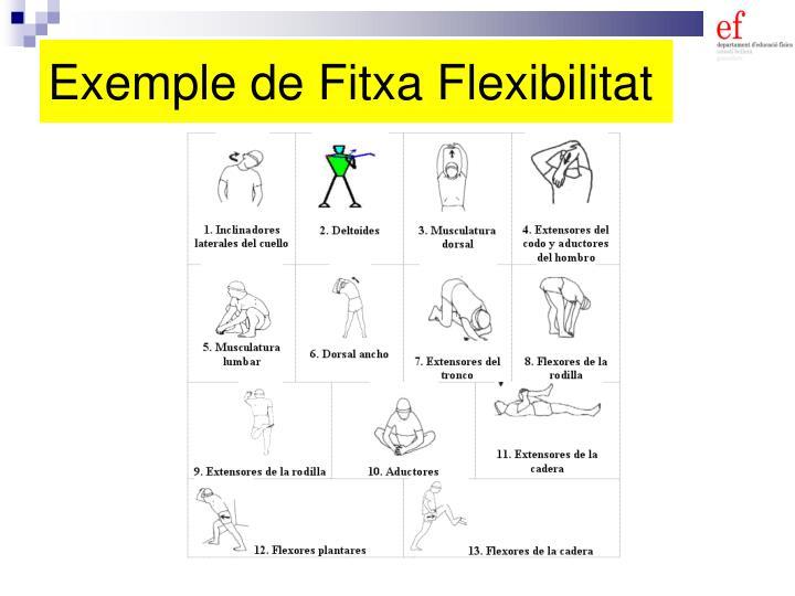 Exemple de Fitxa Flexibilitat
