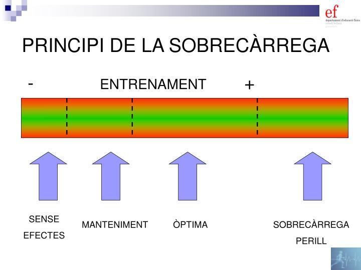 PRINCIPI DE LA SOBRECÀRREGA