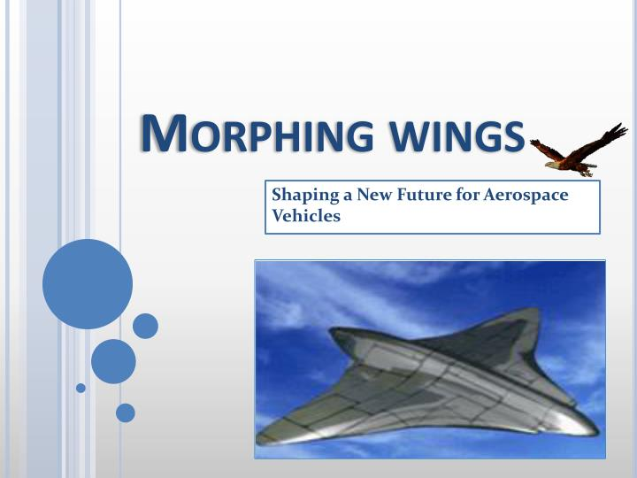 ppt - morphing wings powerpoint presentation