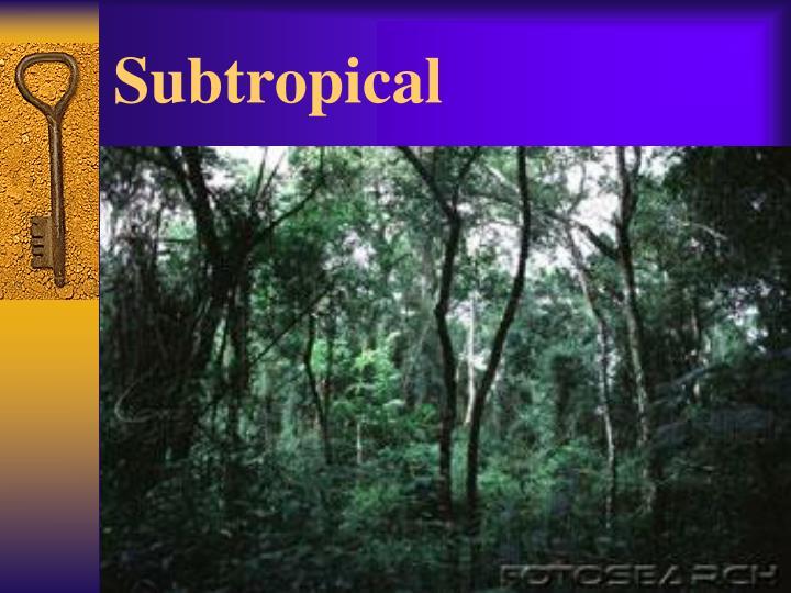 Subtropical