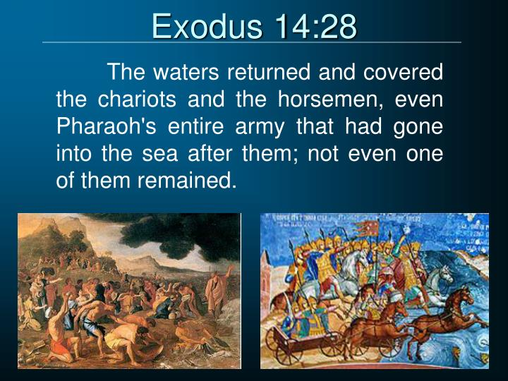 Exodus 14:28