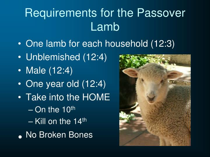 Requirements for the Passover Lamb
