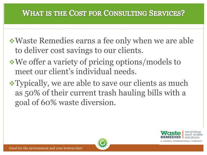 What is the Cost for Consulting Services?