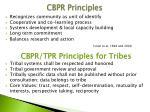 cbpr principles