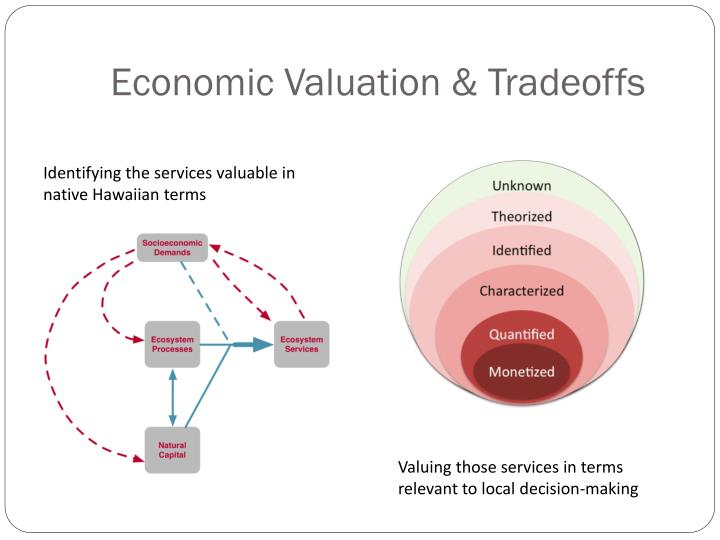 Economic Valuation & Tradeoffs