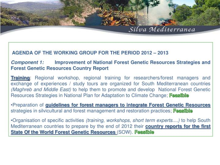 AGENDA OF THE WORKING GROUP FOR THE PERIOD 2012 – 2013
