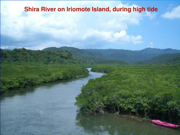 Shira River on Iriomote Island, during high tide