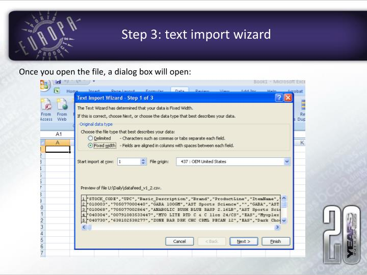 Step 3: text import wizard