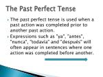 the past perfect tense4