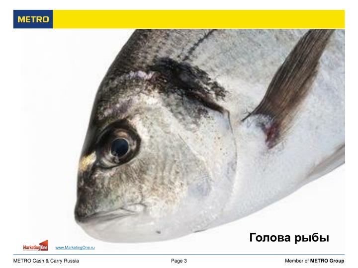 Голова рыбы