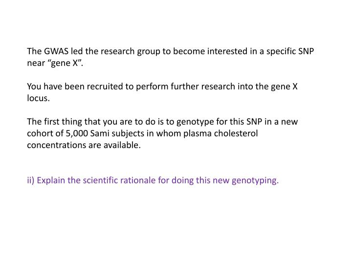 "The GWAS led the research group to become interested in a specific SNP near ""gene X""."