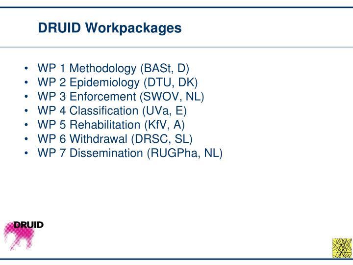 DRUID Workpackages