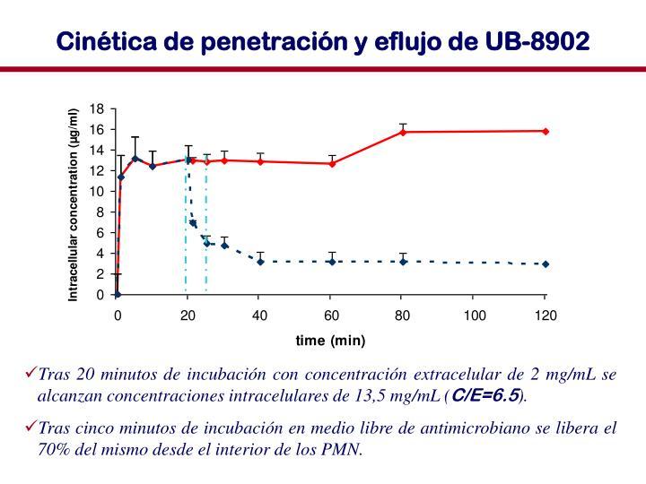 Cinética de penetración y eflujo de UB-8902