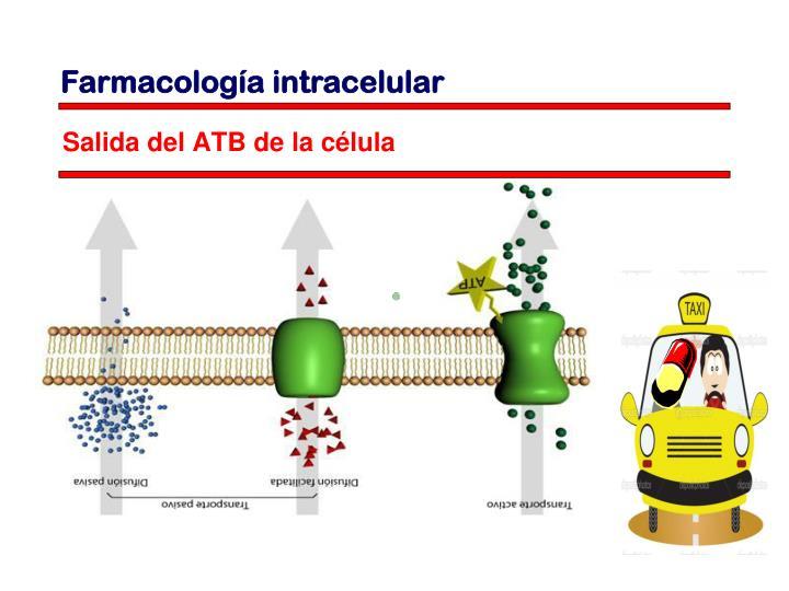 Salida del ATB de la célula