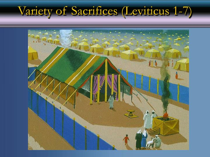 Variety of sacrifices leviticus 1 7