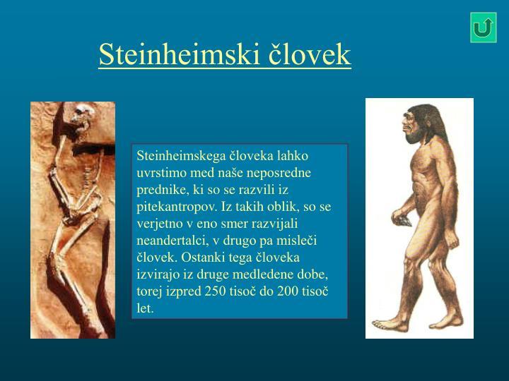 Steinheimski človek