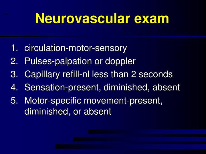 Neurovascular exam