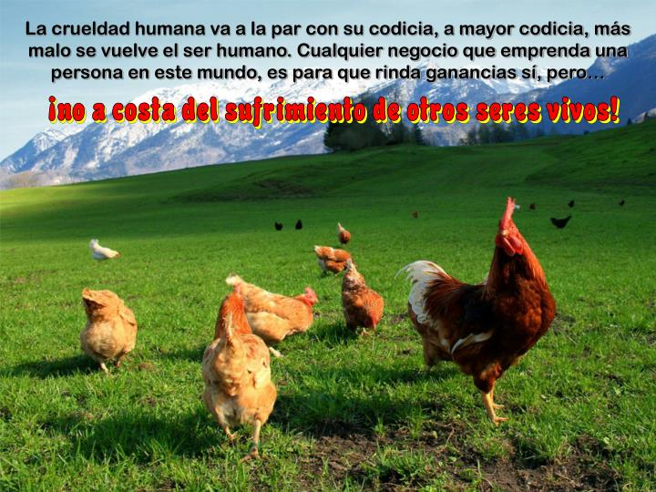 La crueldad humana va a la par con su codicia, a mayor codicia, más malo se vuelve el ser humano. Cualquier negocio que emprenda una persona en este mundo, es para que rinda ganancias sí, pero…