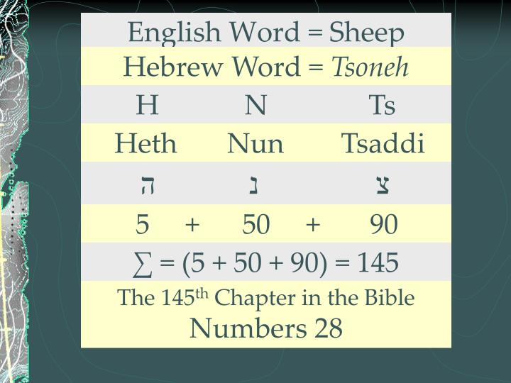 English Word = Sheep