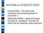 income substitution