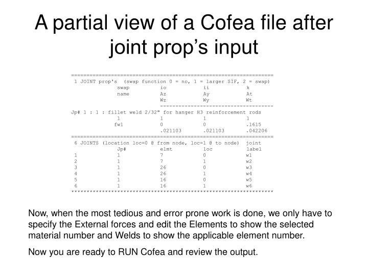 A partial view of a Cofea file after joint prop's input