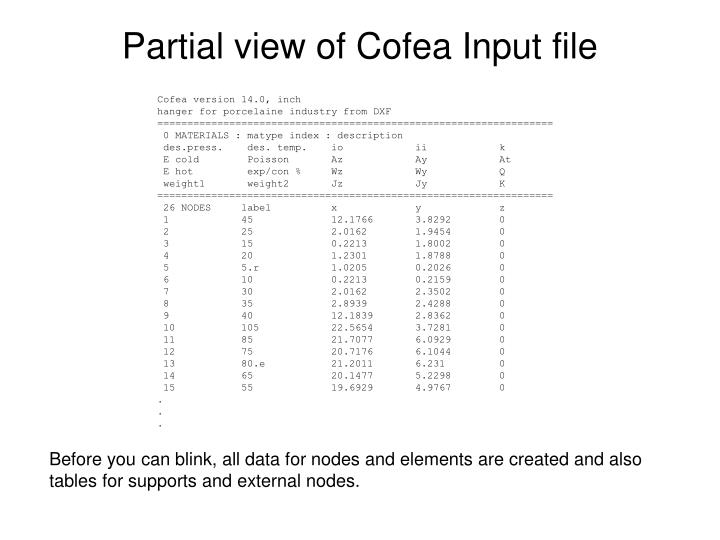 Partial view of Cofea Input file
