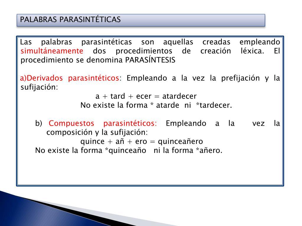 Ppt Morfología 1 Sec Powerpoint Presentation Free