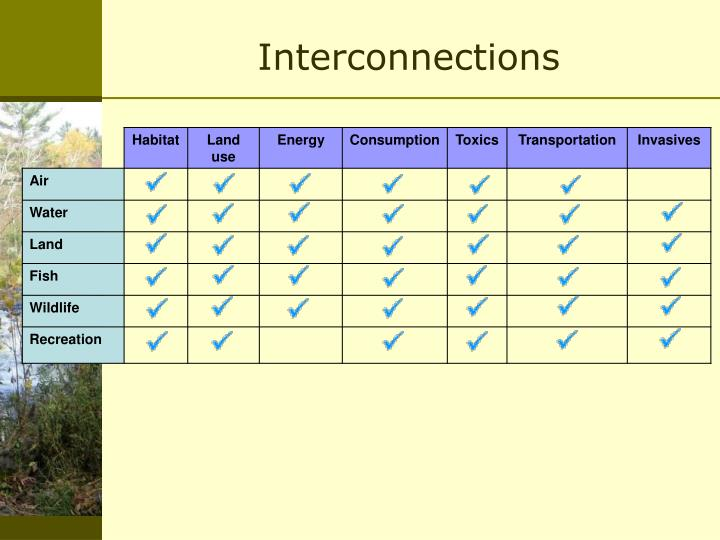 Interconnections