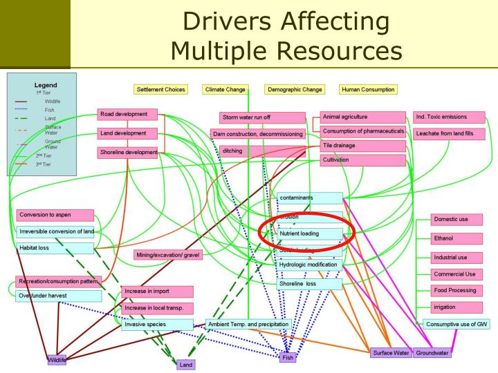 Drivers Affecting