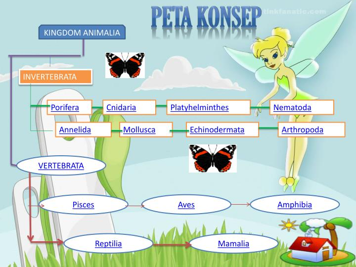 Image of: Filum Platyhelminthes Peta Konsep Slideserve Ppt Kingdom Animalia Powerpoint Presentation Id4846224