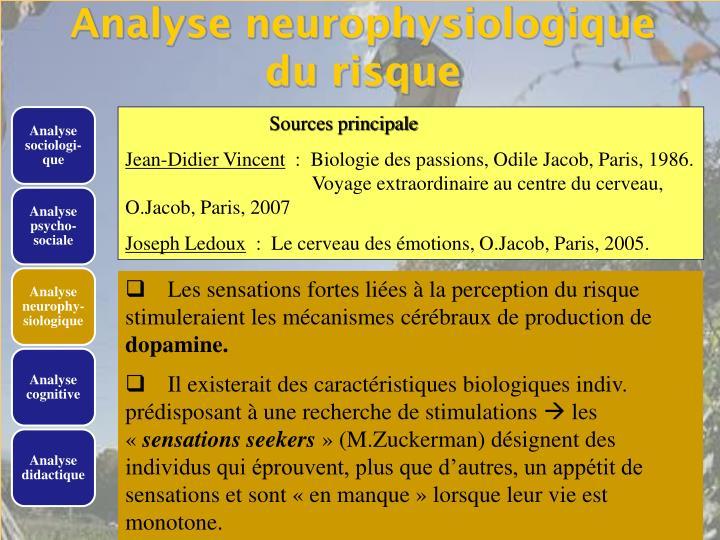 Analyse neurophysiologique du risque