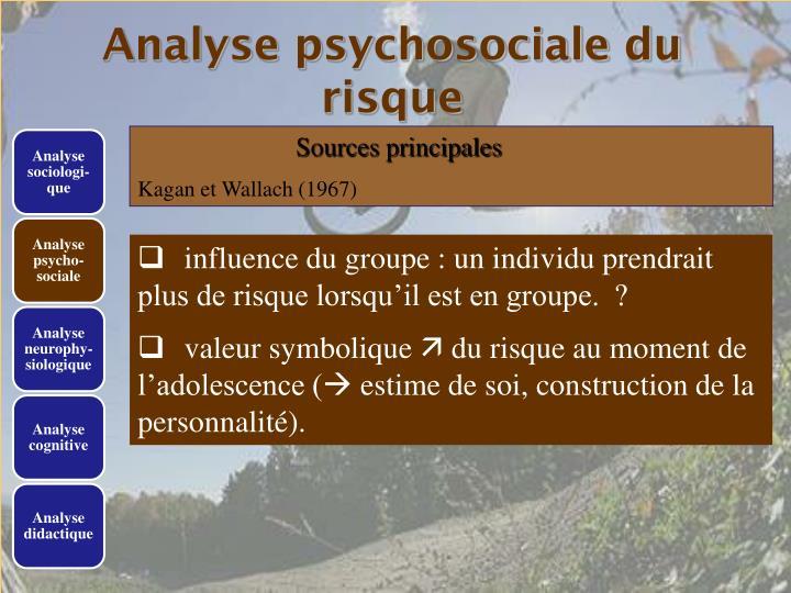 Analyse psychosociale du risque