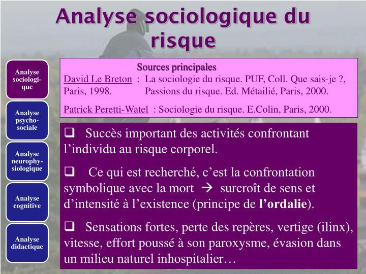 Analyse sociologique du risque