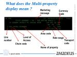 what does the multi property display mean