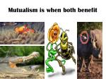 mutualism is when both benefit