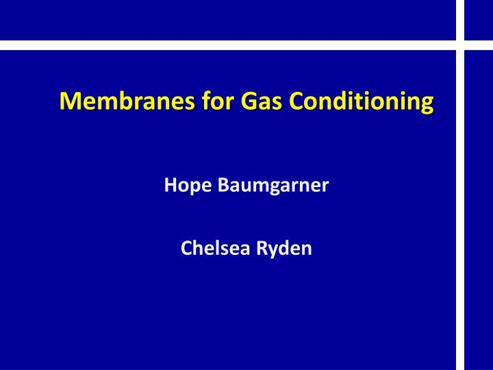 membranes for gas conditioning n.