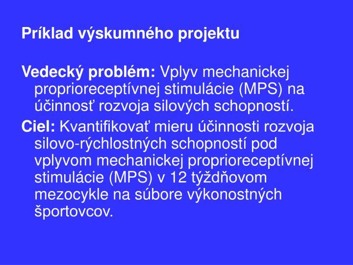 Príklad výskumného projektu