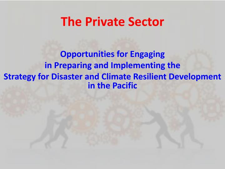 the private sector n.