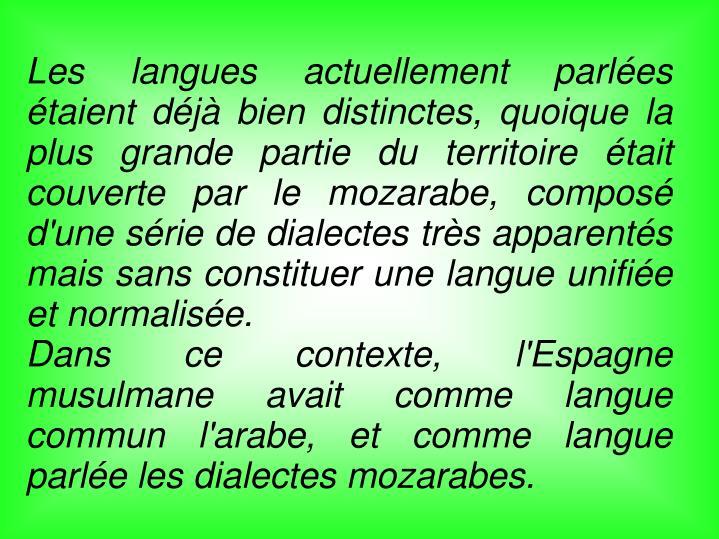 Les langues actuellement parlées étaient déjà bien distinctes, quoique la plus grande partie du territoire était couverte par le mozarabe, composé d'une série de dialectes très apparentés mais sans constituer une langue unifiée et normalisée.