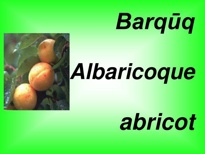 Barqūq