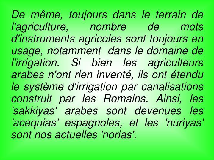 De même, toujours dans le terrain de l'agriculture, nombre de mots d'instruments agricoles sont toujours en usage, notamment  dans le domaine de l'irrigation. Si bien les agriculteurs arabes n'ont rien inventé, ils ont étendu le système d'irrigation par canalisations construit par les Romains. Ainsi, les 'sakkiyas' arabes sont devenues les 'acequias' espagnoles, et les 'nuriyas' sont nos actuelles 'norias'.