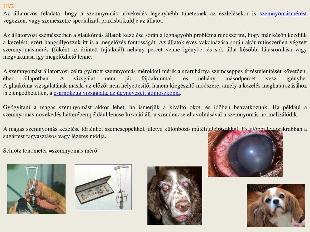 szaruhártya látásromlása)
