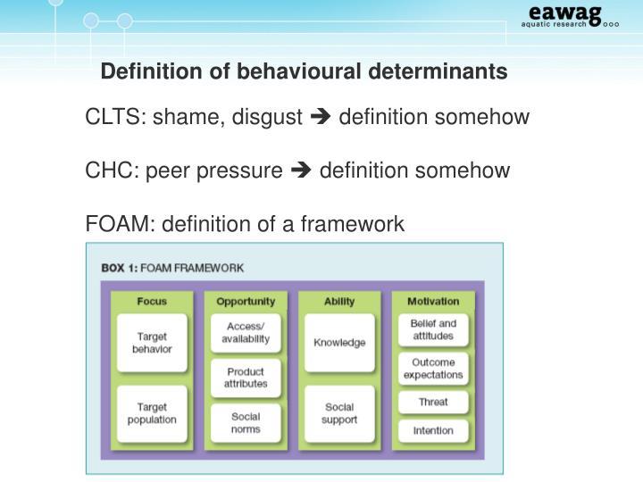 Definition of behavioural determinants