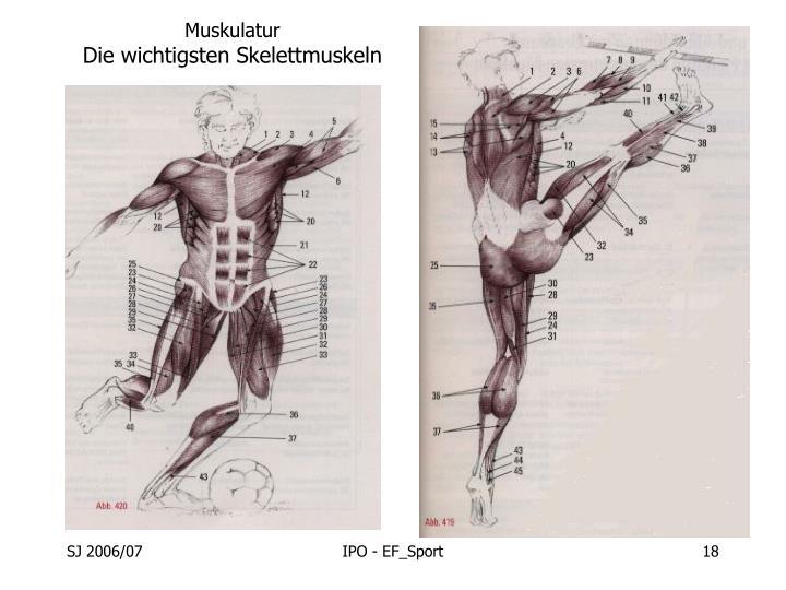Thorsten Distler - Freelance Translator - Thorsten Distler ...