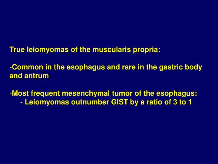 True leiomyomas of the muscularis propria: