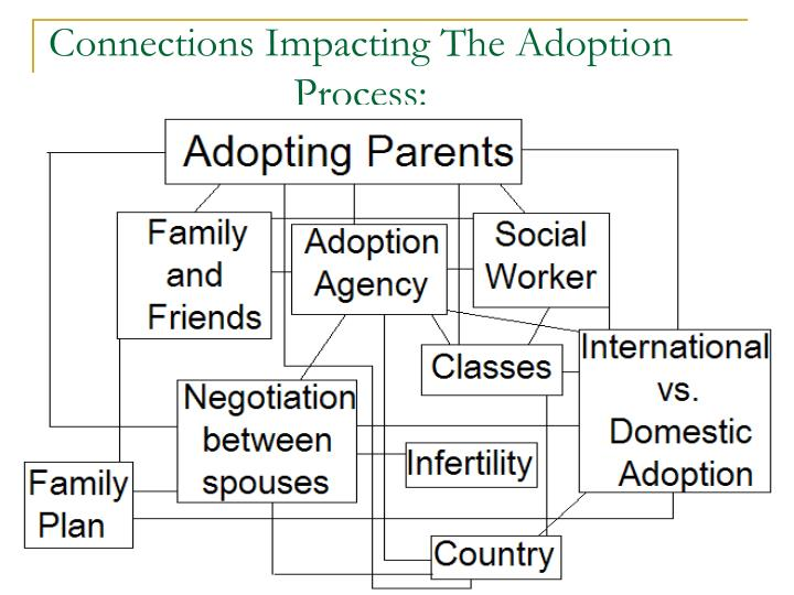 Connections Impacting The Adoption